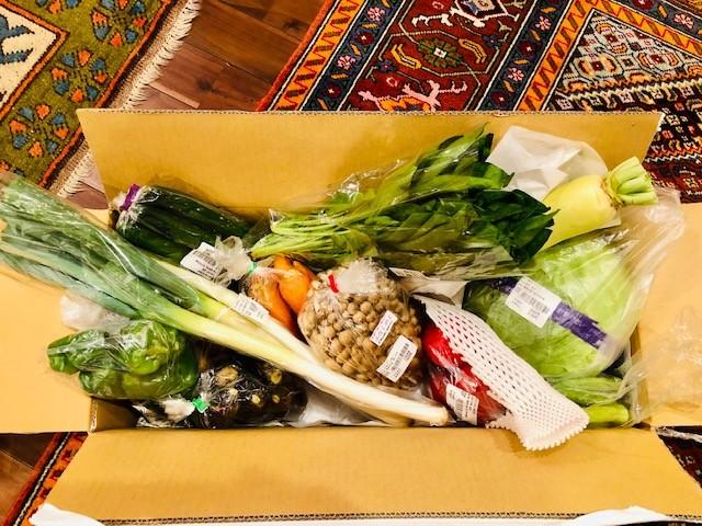 10月のお野菜が届いたよ!